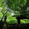 秋月・黒門