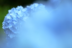 ブルーな日々