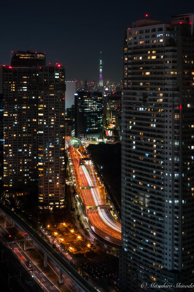 東京スカイツリーが見えますかー?