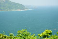 都井岬の絶景