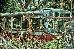 路線バス 土に還る