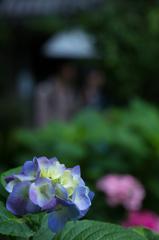 白山神社にて3
