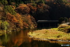 飛騨川をゆく