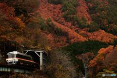 秋の高山線