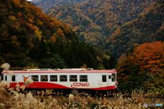 秋の樽見鉄道