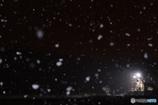 雪の高科駅