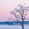 朝焼けと霧氷