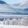 霧氷の国で