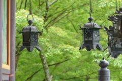 青葉の灯篭5