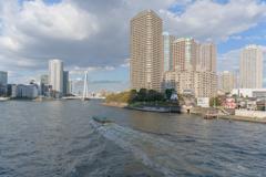 佃島界隈2