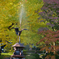 鶴の噴水6