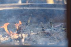 浅草寺の常香炉3