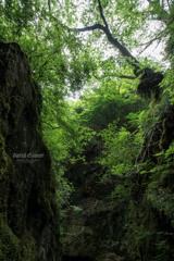 岩の間の大自然