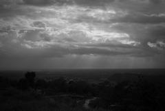 中部ジャワの農村風景