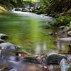 渓流の誘い4
