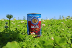 大草原の小さなBOSS