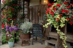 バラ園のcafé