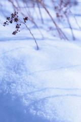 雪のはら 2