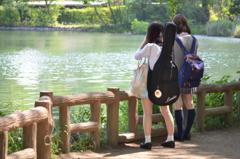 夏と、ギターと、女子高生