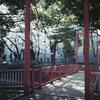 木漏れ日の吊り橋