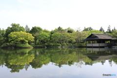 昭和記念公園⑧