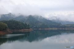 霧の宮ヶ瀬湖12