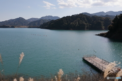 宮ヶ瀬湖 11月2日10