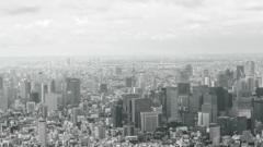 スカイツリーから東京タワーP1000687