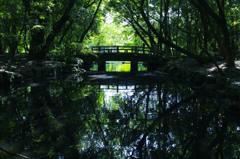 神苑に渡る橋