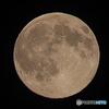 月齢14.3 大潮 お月さま