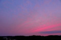 ピンクの夕暮れ