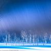 Winter storm〜青い池ライトアップ