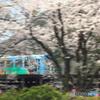 桜舞台の神楽号