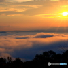 霧の海と朝日