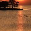 宍道湖夕日