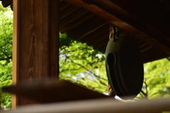 木目と銅鑼