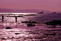 磯の釣り人~煌く海に挑む~③