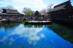 忍野村を訪ねて...忍野八海・中池