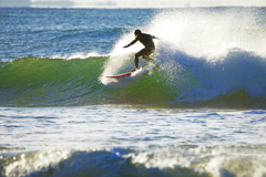 真冬のサーファー~波しぶきを背にしながら