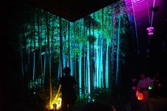 かまくら 長谷の灯かり ~長谷寺~④