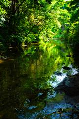 深緑を映す流れ… ②