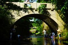 緑眩しき川遊び…