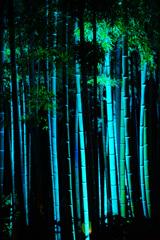 かまくら 長谷の灯かり ~長谷寺~⑥