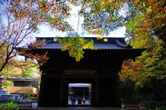晩秋の妙本寺山門 ②