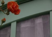 CANON Canon EOS 70Dで撮影した(窓辺 その6)の写真(画像)
