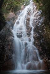 雄滝1(陽梅の滝より)