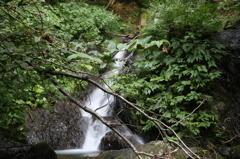 高倉砂防堰堤探検記-小さな滝で行き止まり-