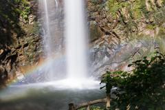 滝と虹とアジサイの木w