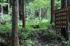 高倉砂防堰堤探検記-再び立成谷の入口へ-