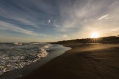 朝の海岸を歩いてみれば